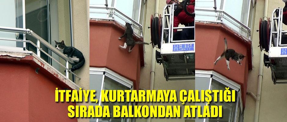 TAM KURTULUYORDU, AŞAĞIYA ATLADI...