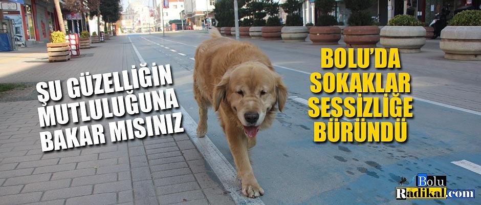 SOKAKLAR BOŞ KALDI...
