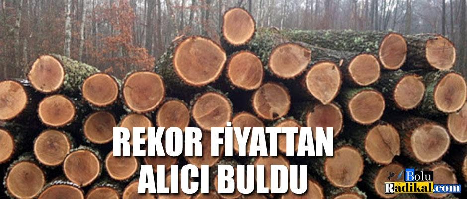 MEŞE TOMRUKLAR REKOR FİYATTAN SATILDI...