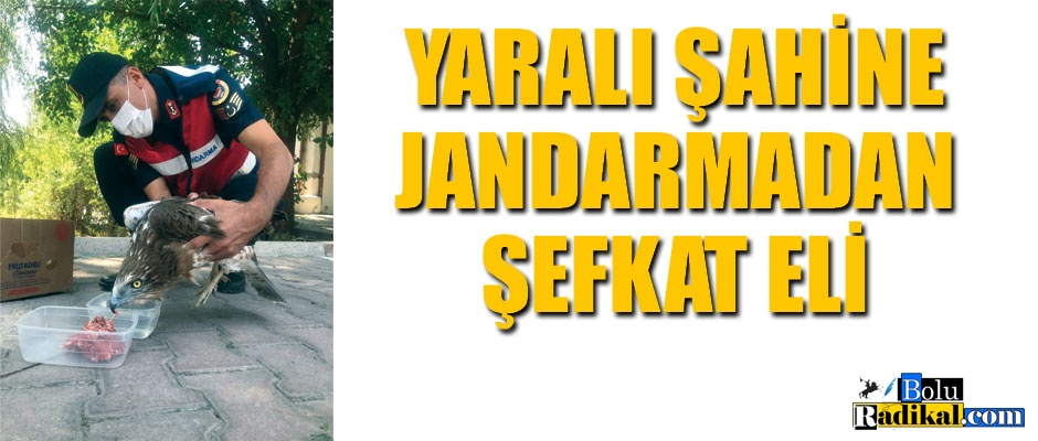 JANDARMADAN ŞEFKAT ELİ...