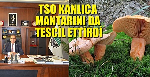 TSO KANLICA MANTARINI DA TESCİL ETTİRDİ